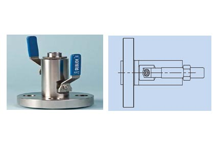 Integral Double Block Valves